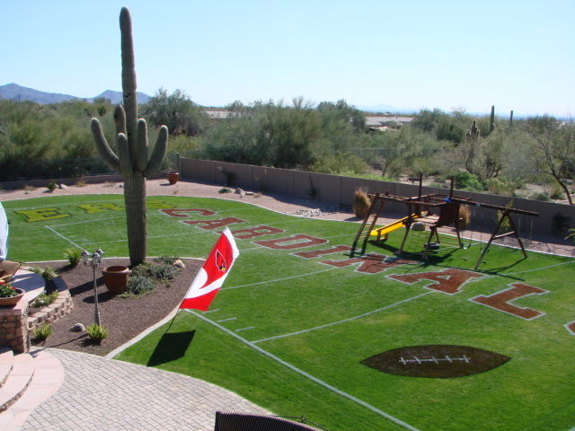Football Field In Your Backyard : Backyard Football Field Paint In their backyard!