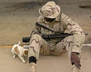 soldier with puppy