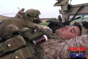 marine with puppy