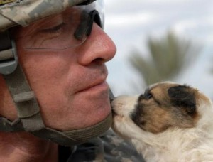 US soldier with puppy
