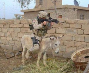 sniper on donkey, funny